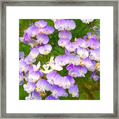 Lovely #purple #flowers Beg Your Framed Print