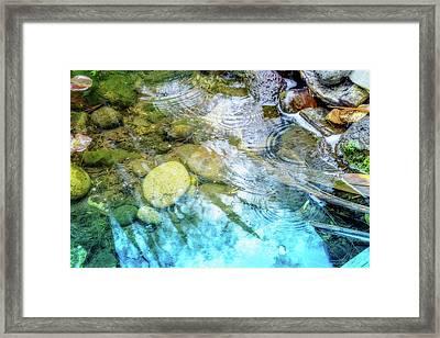 Lovely Ripples Framed Print by Terry Davis