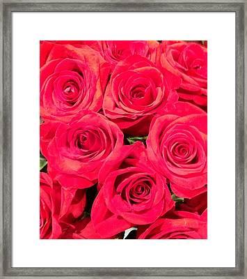 Lovely Roses Framed Print
