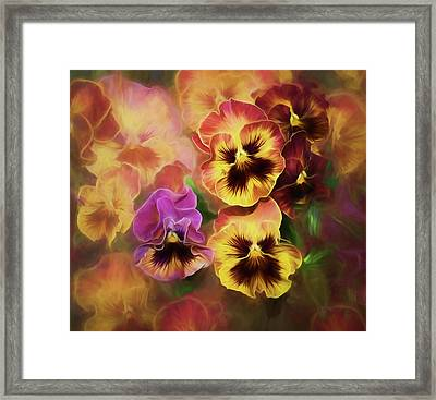 Framed Print featuring the photograph Lovely Spring Pansies by Diane Schuster