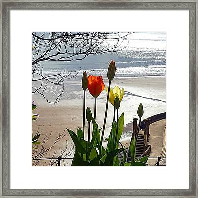 Lovely Walk In #scarborough, Love The Framed Print by Dante Harker
