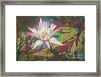 Lovely Waterlilies 2 Framed Print