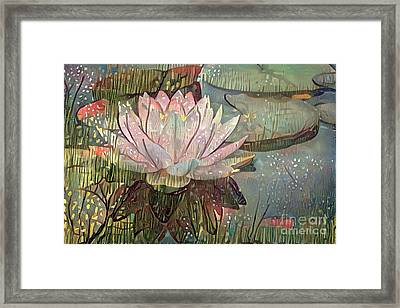 Lovely Waterlilies 5 Framed Print