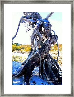 Lovers Entwined Beach Driftwood Framed Print by Janine Riley