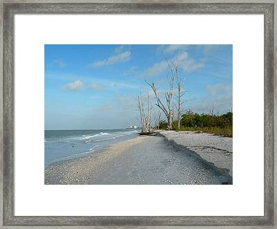 Lovers Key Beach Framed Print by Rosalie Scanlon