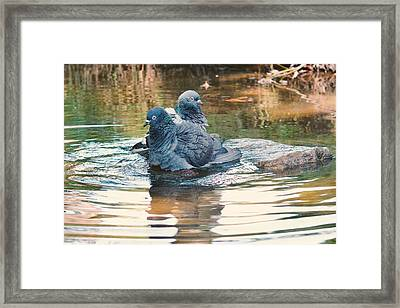 Lovers On A Hot Summer Day Framed Print