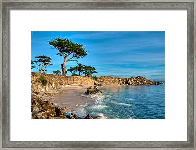 Lovers Point Pacific Grove Early Morning Framed Print by Connie Cooper-Edwards