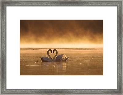 Lovers Framed Print by Przemyslaw Kruk