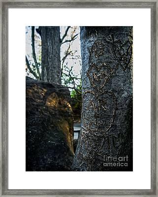 Love's Scars In Central Park Framed Print
