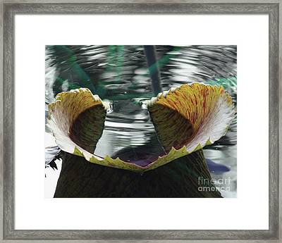 Love's Symbol Framed Print