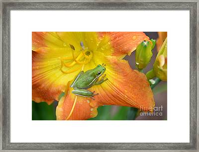 Lovin The Rains Framed Print by Kathy Gibbons