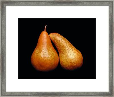 Framed Print featuring the photograph Loving Pair by Gary Cloud