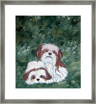 Loving Shih Tzu Framed Print by Tammy Brown