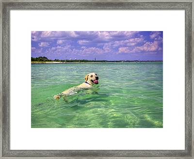 Loving The Emerald Coast Framed Print by JC Findley