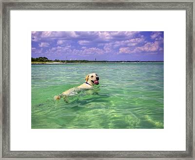 Loving The Emerald Coast Framed Print