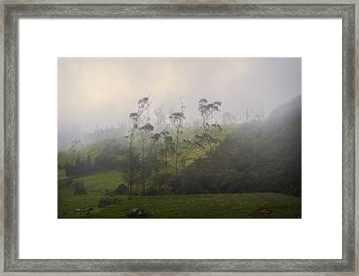 Low Clouds Framed Print