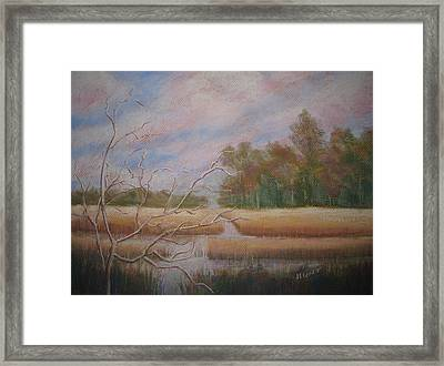 Low Country Framed Print by Shirley Braithwaite Hunt