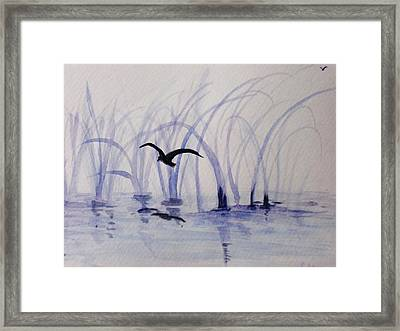 Low Flight Framed Print by Trilby Cole