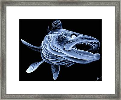 Low Light Walleye Framed Print by Nick Laferriere