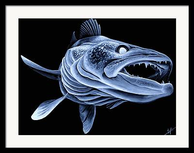 Pickerel Framed Prints