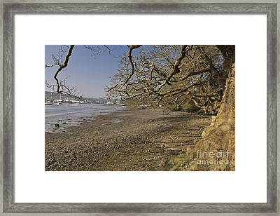 Low Spring Tide At Mylor Creek Framed Print by Terri Waters