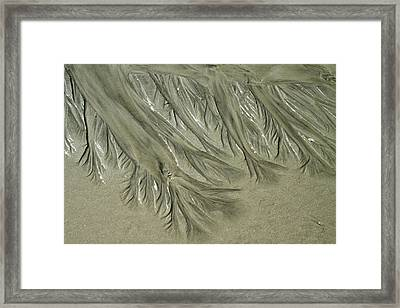 Low Tide Abstracts Iv Framed Print