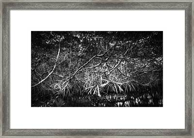 Low Tide Bw Framed Print