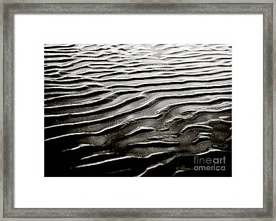 Low Tide  Framed Print by Charmian Vistaunet
