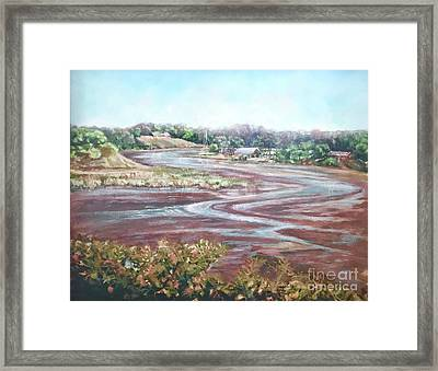Low Tide In The Cove Framed Print