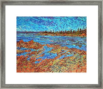 Low Tide Oak Bay Nb Framed Print