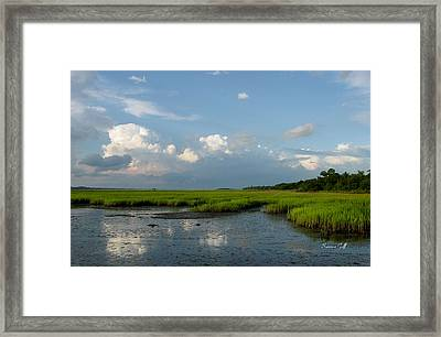 Low Tide Framed Print by Suzanne Gaff