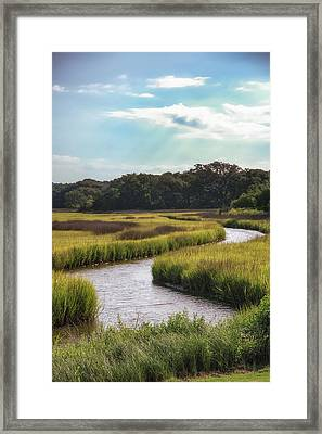 Lowcountry Creek Framed Print by Drew Castelhano