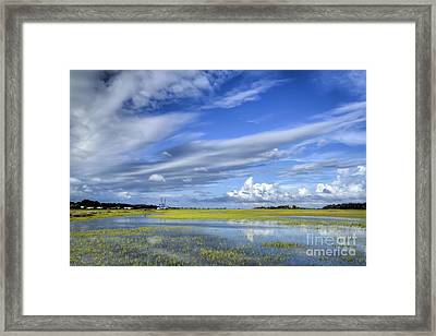 Lowcountry Flood Tide II Framed Print by Dustin K Ryan