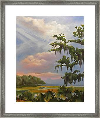 Lowcountry Framed Print