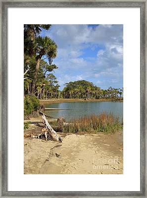 Lowcountry Lagoon Framed Print by Louise Heusinkveld