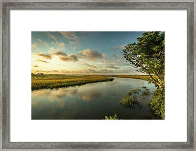 Pitt Street Bridge Creek Sunrise Framed Print