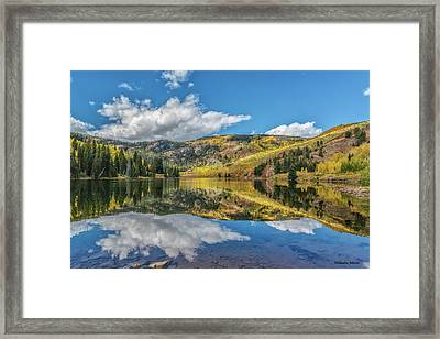 Lower Cataract Lake Aspen Framed Print