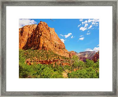 Lower Emerald Pool Trail - Zion National Park Framed Print by Penny Lisowski