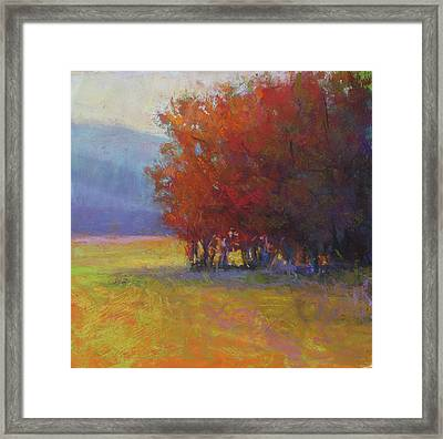 Lower Farm Field Framed Print by Susan Williamson