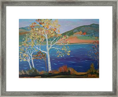 Lower Hadley Pond Framed Print