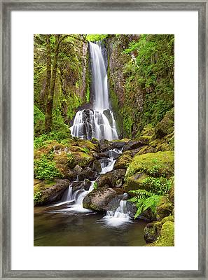Framed Print featuring the photograph Lower Kentucky Falls In Spring by Patricia Davidson