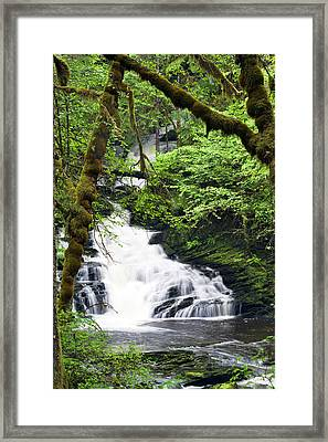 Lower Lunch Creek Falls Framed Print