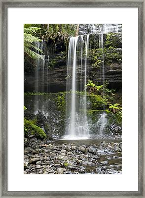 Lower Russell Falls Tasmania  Framed Print by Odille Esmonde-Morgan
