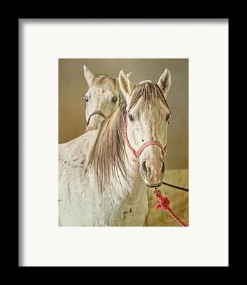 El Paso Art Association Framed Prints