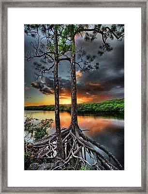 Loxachatchee Sunset Framed Print