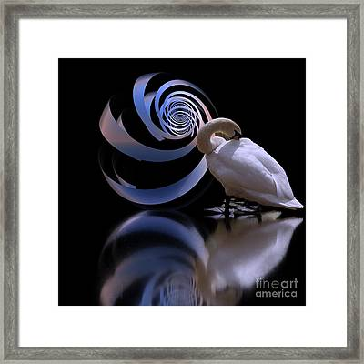 Loxodrome And Swan Framed Print