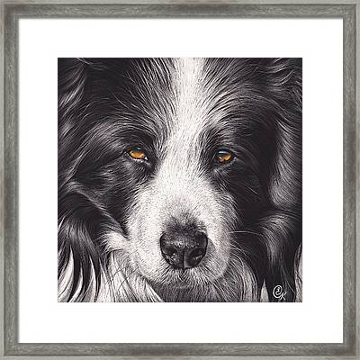 Loyal Companion Framed Print by Elena Kolotusha