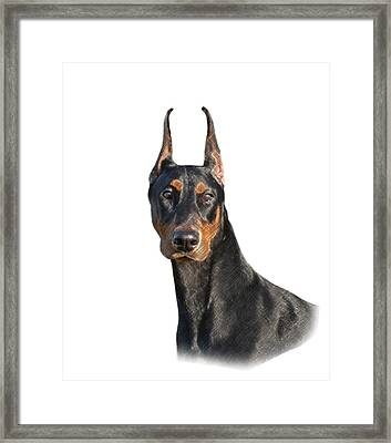 Loyalty, Honesty, Persevarance Framed Print by Maria C Martinez