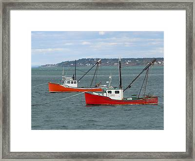 Framed Print featuring the photograph Lubec Lobster Boats by Francine Frank