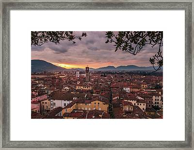 Lucca In Tuscany Framed Print